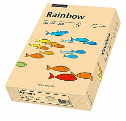 carton-color-a4-160-g-rainbow-salmon