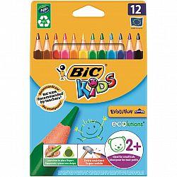 creioane-colorate-12-culori-triunghiulare-evolution-bic