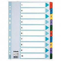 separator-a4-esselte-mylar-din-carton-11-perforatii-1-10