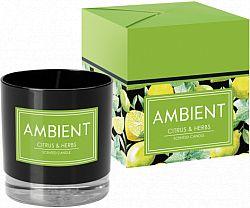 lumanare-parfumanata-ambient-in-pahar-citrice-si-ierburi
